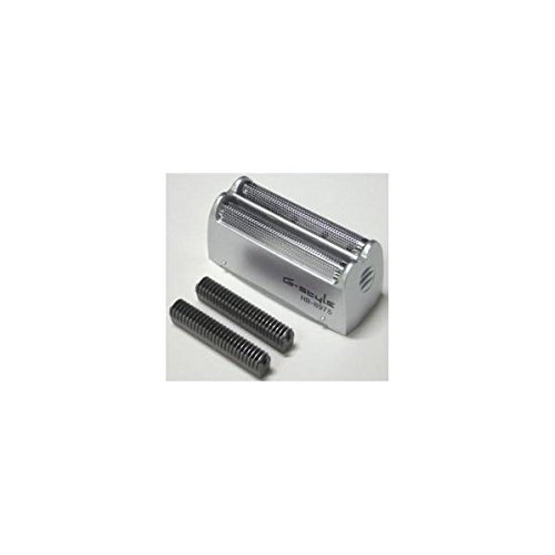 ステレオシャーロットブロンテ風邪をひくオーム電機 シェーバー用替え刃セット HB8981
