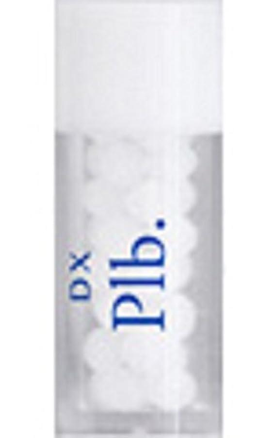 みがきますサンダル絶望的なホメオパシージャパンレメディー DX Plb.  ディーエックス プランボン (小ビン)