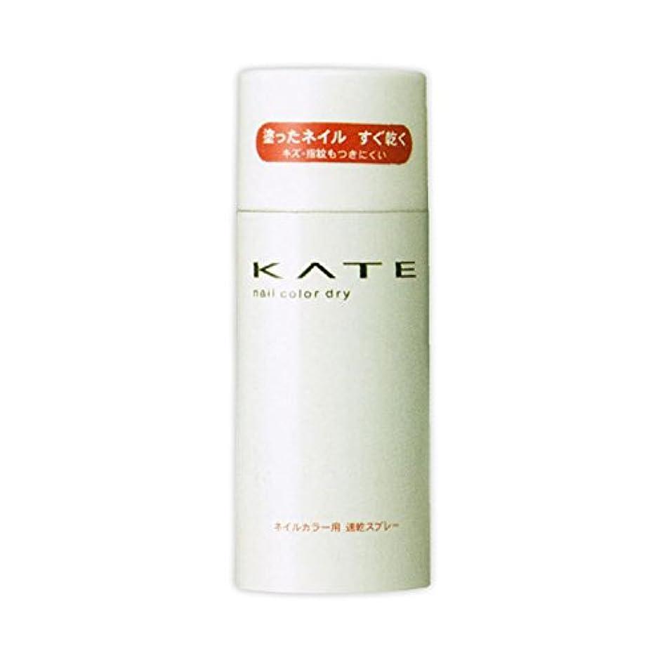 ロケーション孤独黒カネボウ ケイト KATE ネイルカラードライ S 90g
