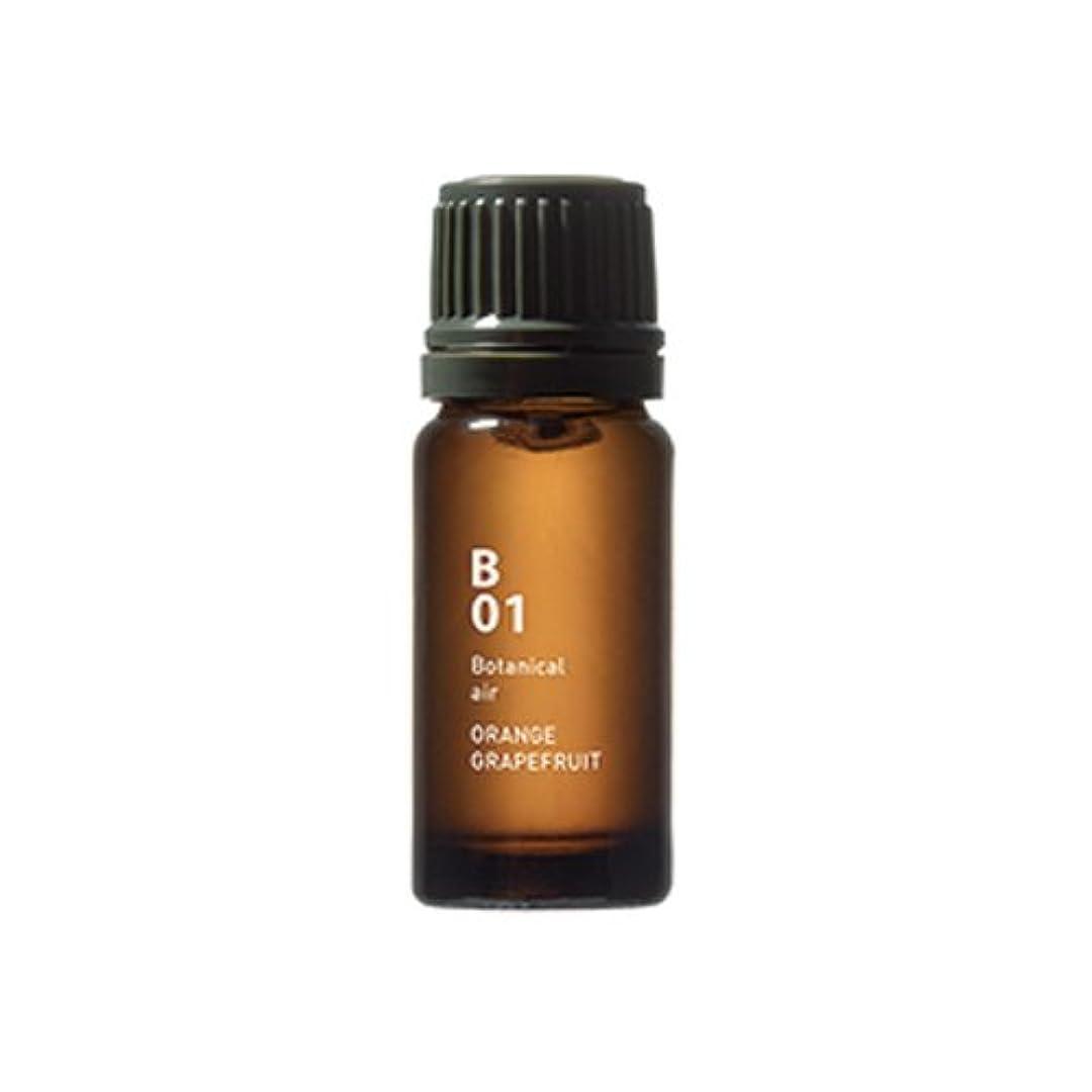 保護する熱望する強いB01オレンジグレープフルーツ Botanical air(ボタニカルエアー) 10ml