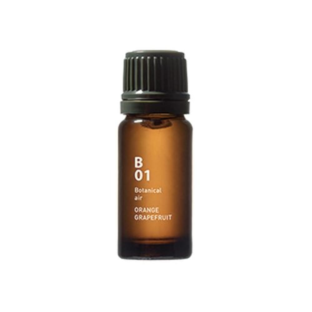 ディプロマ考慮手配するB01オレンジグレープフルーツ Botanical air(ボタニカルエアー) 10ml