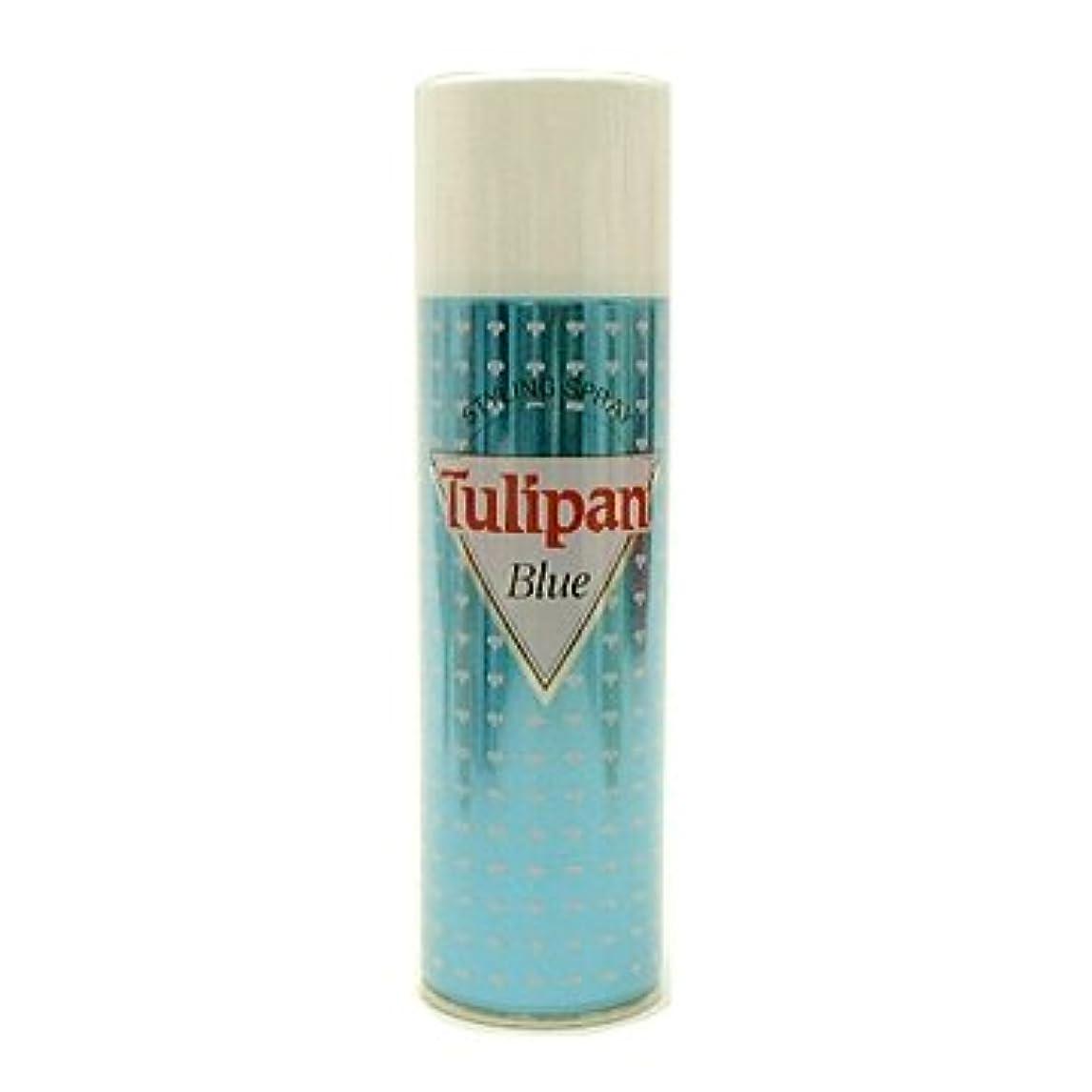 カポックエイリアス忠実な山本美材 チュリパンスプレースーパーハード アンセンテッド ブルー 容量300g