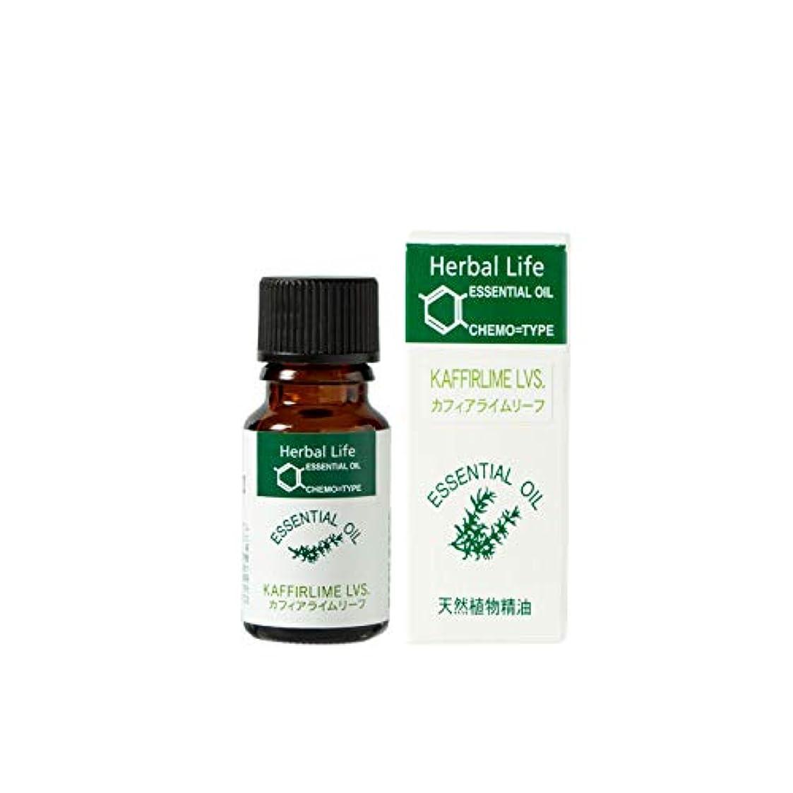 透ける拍手ストレスの多い生活の木 エッセンシャルオイル カフィアライムリーフ(10ml)