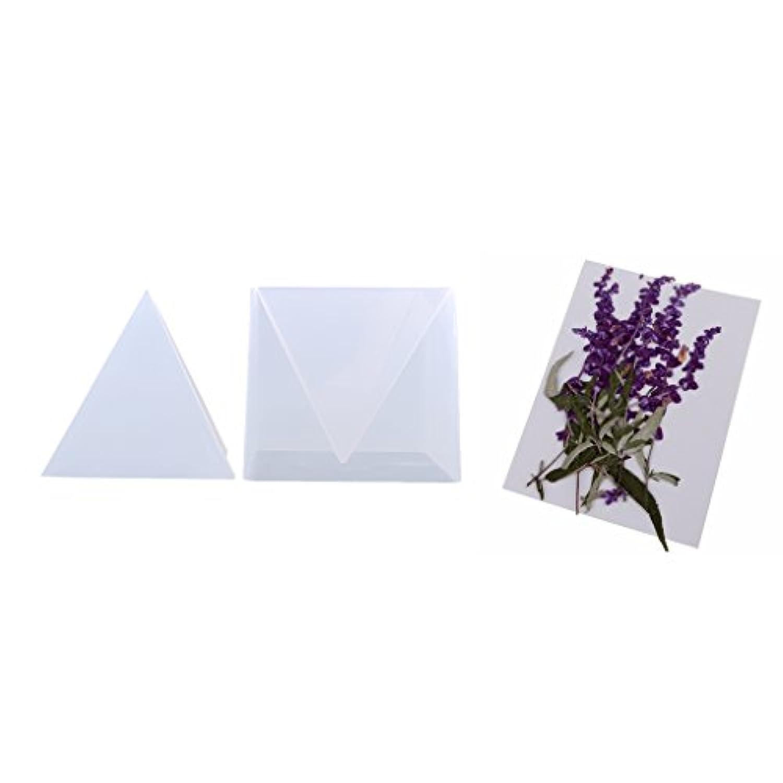 Fityle シリコーン金型 ピラミッドの形 乾燥した紫色の花 押された 手作り 工芸品 混合