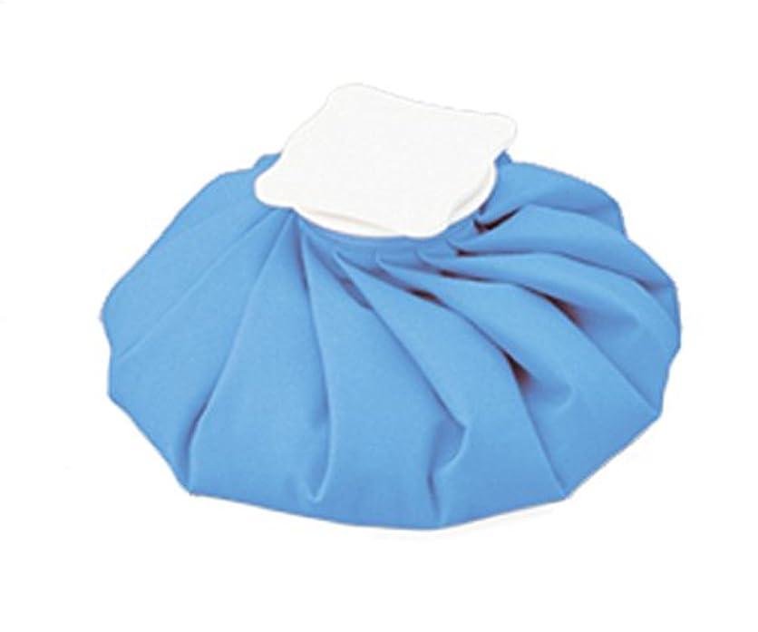 ガイドライン洗剤罹患率アズワン ナビアイスバッグ ブルー M /8-1218-02