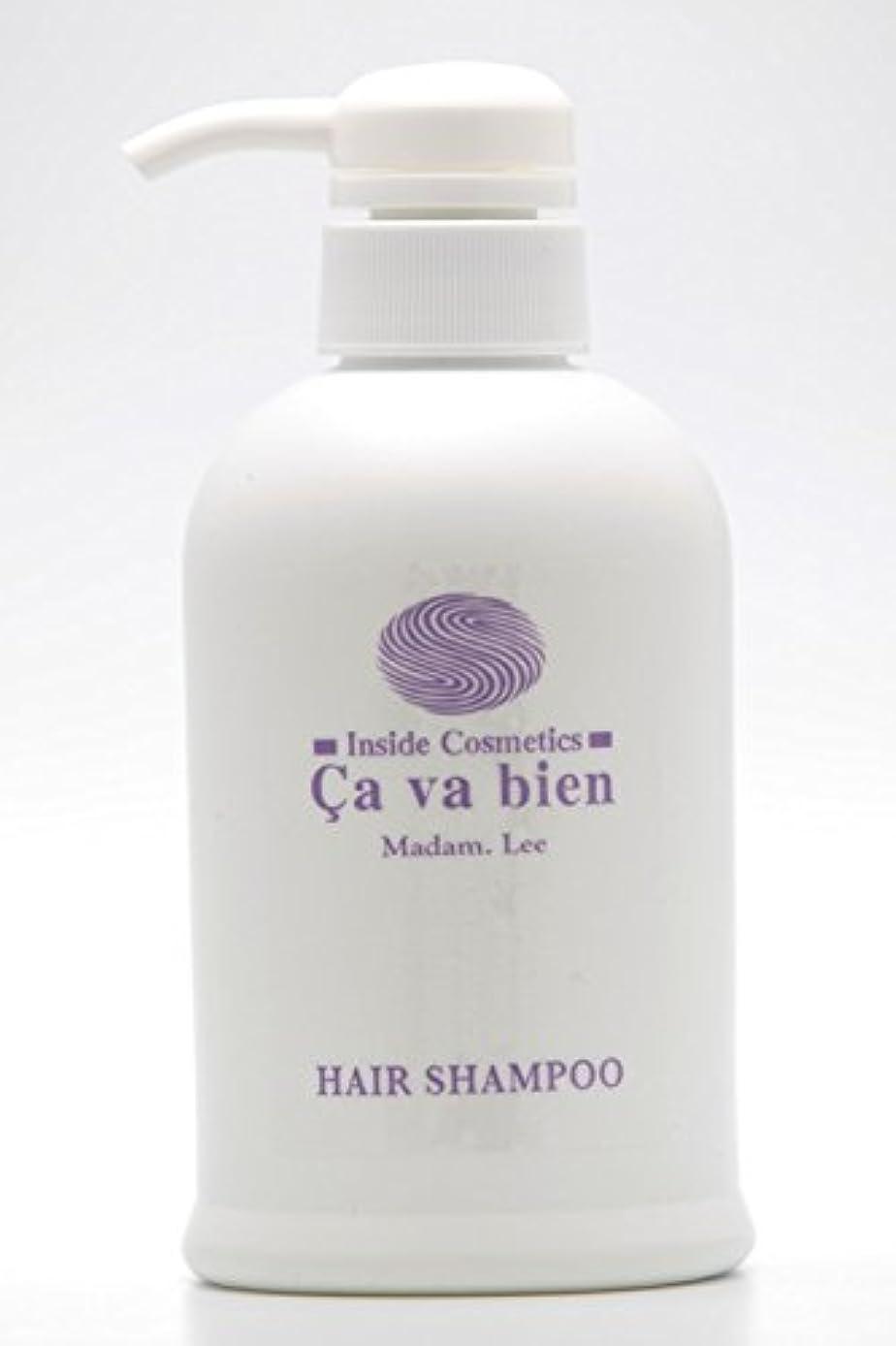 ノイズ圧縮するホールドアミノ酸シャンプー Hair Shampoo