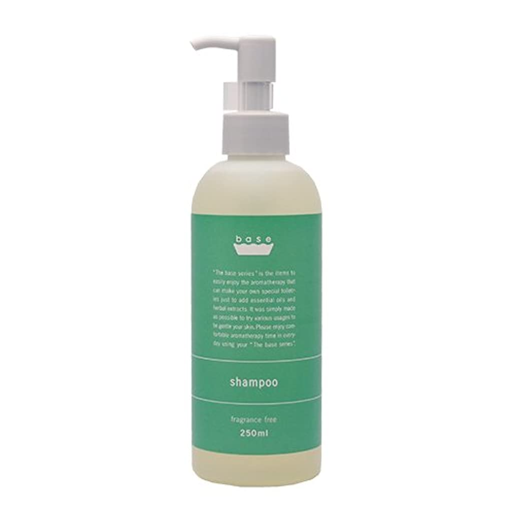セットアップフルートカリキュラムbase shampoo(ベースシャンプー)250ml