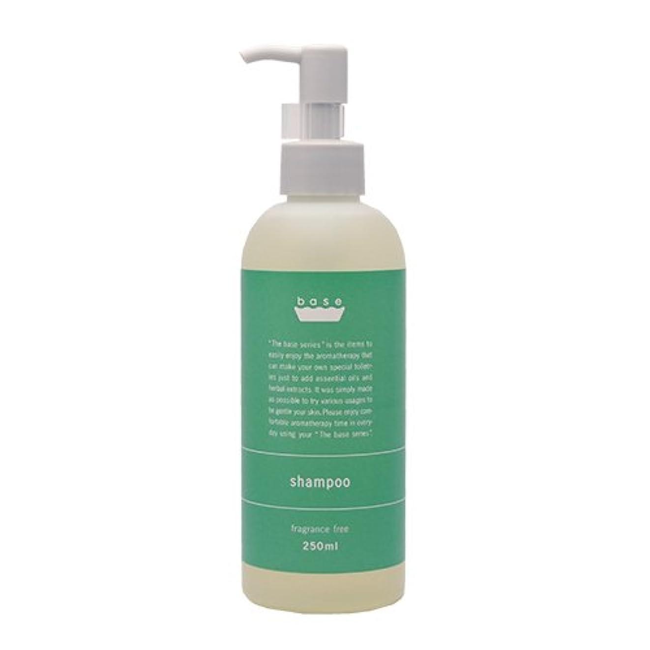 栄養条件付き電気陽性base shampoo(ベースシャンプー)250ml