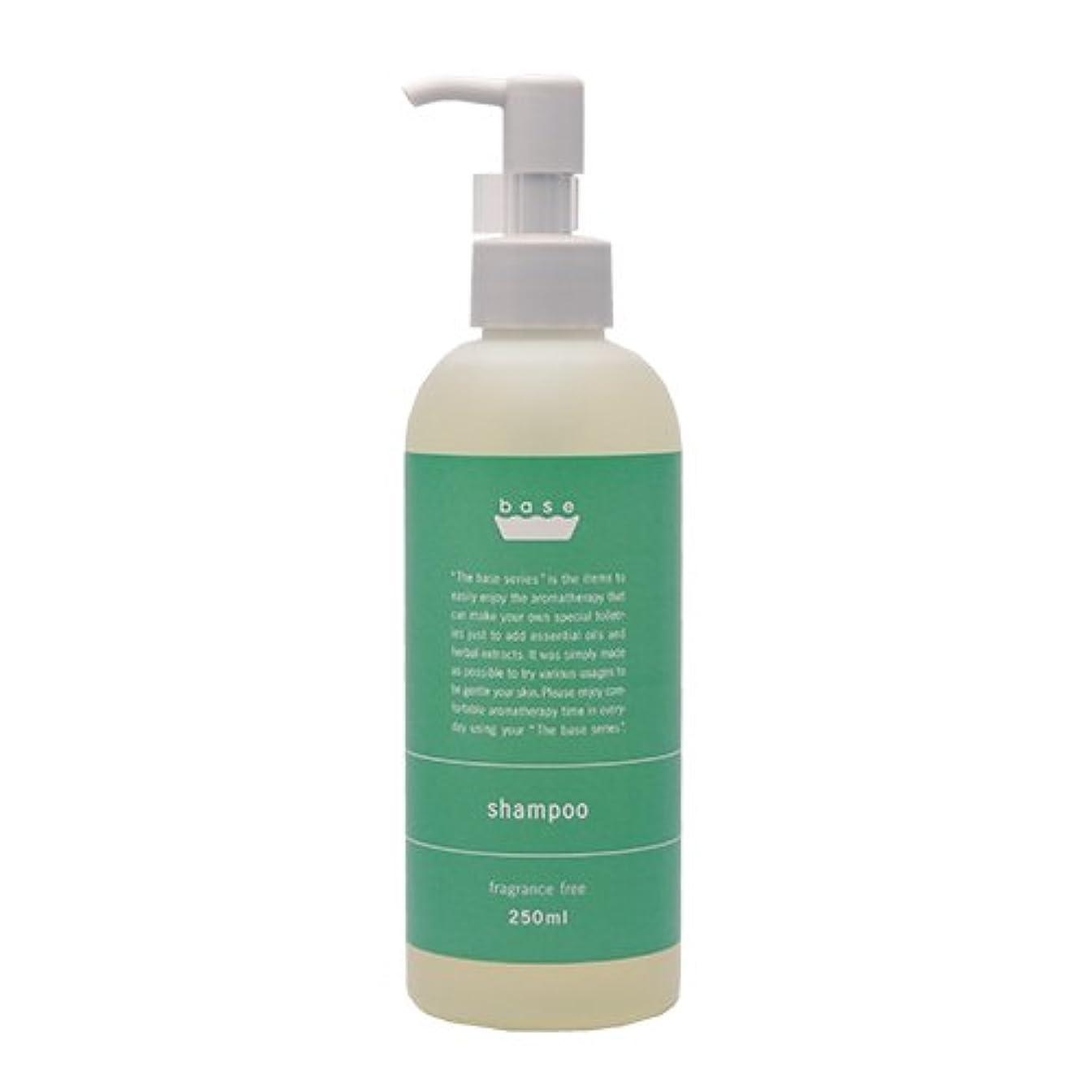 間接的トムオードリース炎上base shampoo(ベースシャンプー)250ml