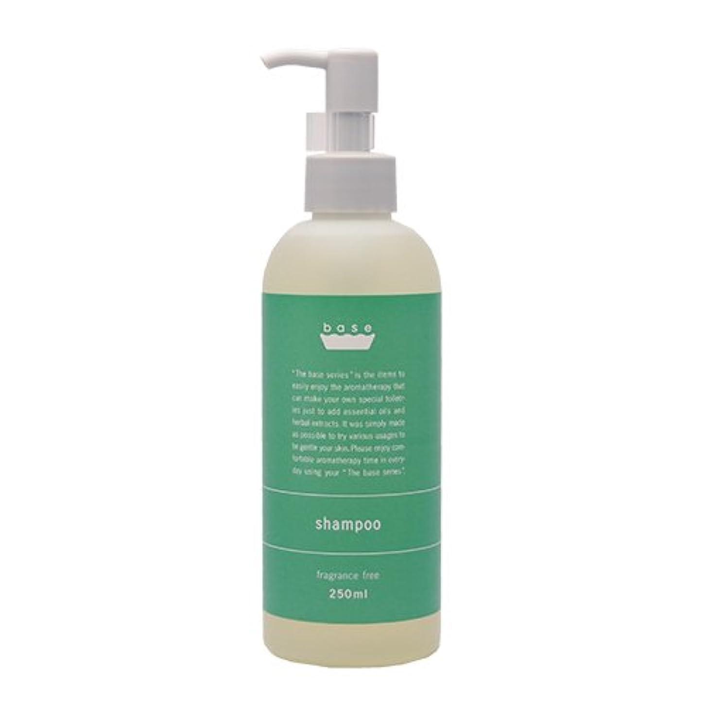 解決する罰レベルbase shampoo(ベースシャンプー)250ml