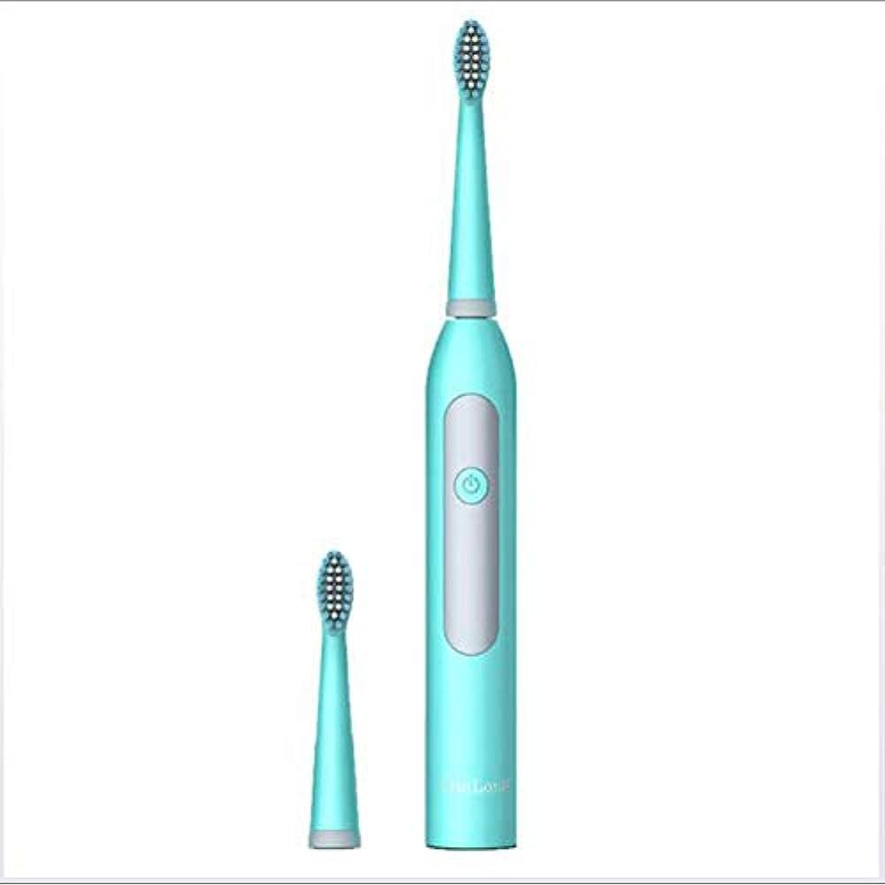 逸話受け継ぐ急降下電動歯ブラシ、音波洗浄大人用自動歯ブラシIPX7防水バッテリー,C