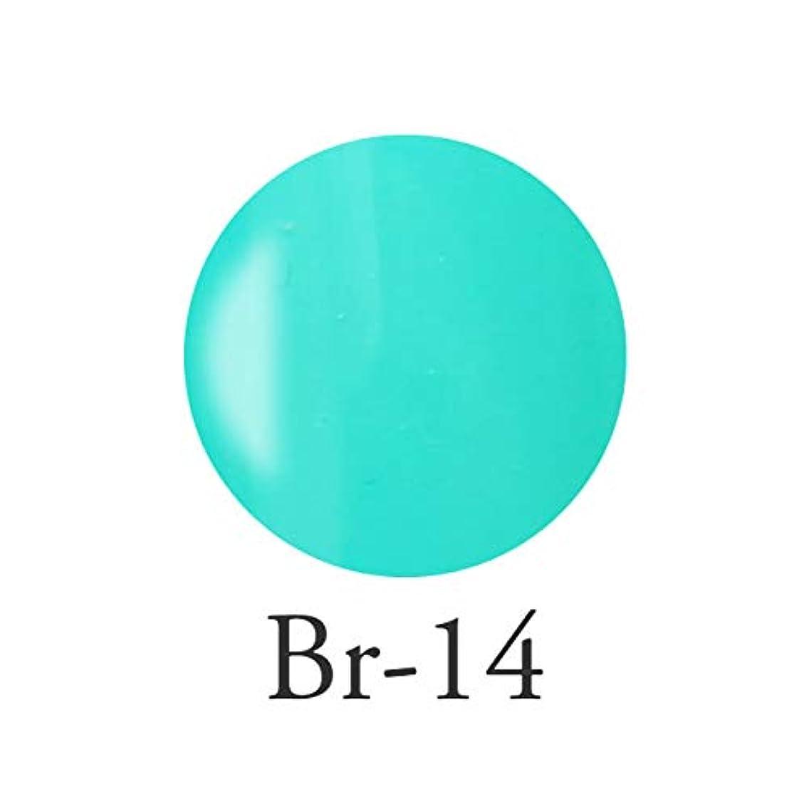 礼儀装備する血色の良いエンジェル クィーンカラージェル フェリシテブルー Br-14 3g