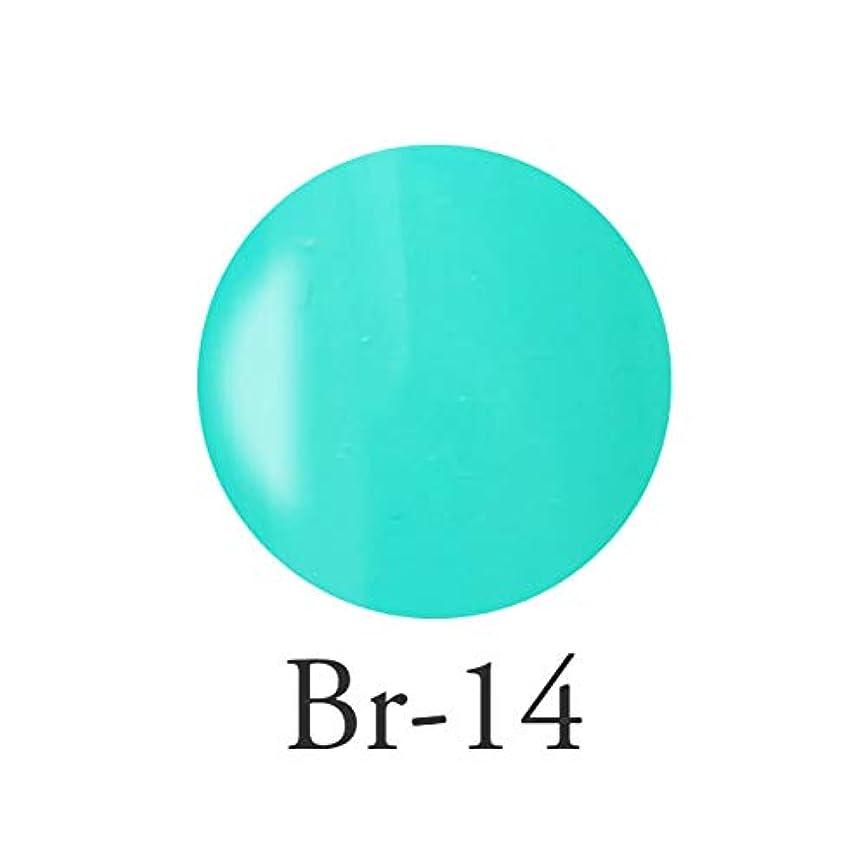 高度な生命体ホイールエンジェル クィーンカラージェル フェリシテブルー Br-14 3g