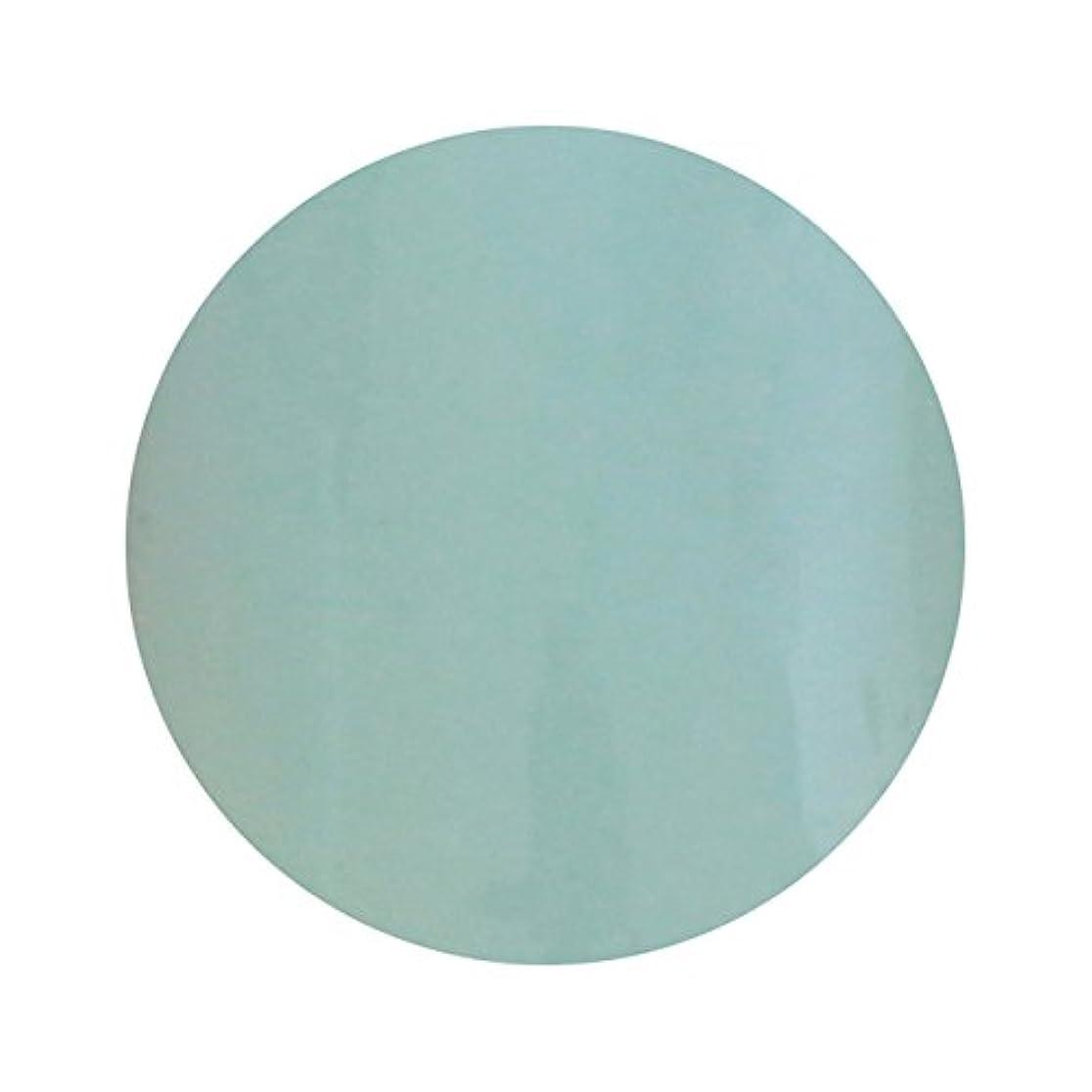 マリナーゴール不忠T-GEL COLLECTION ティージェル カラージェル D210 ペールブルー 4ml