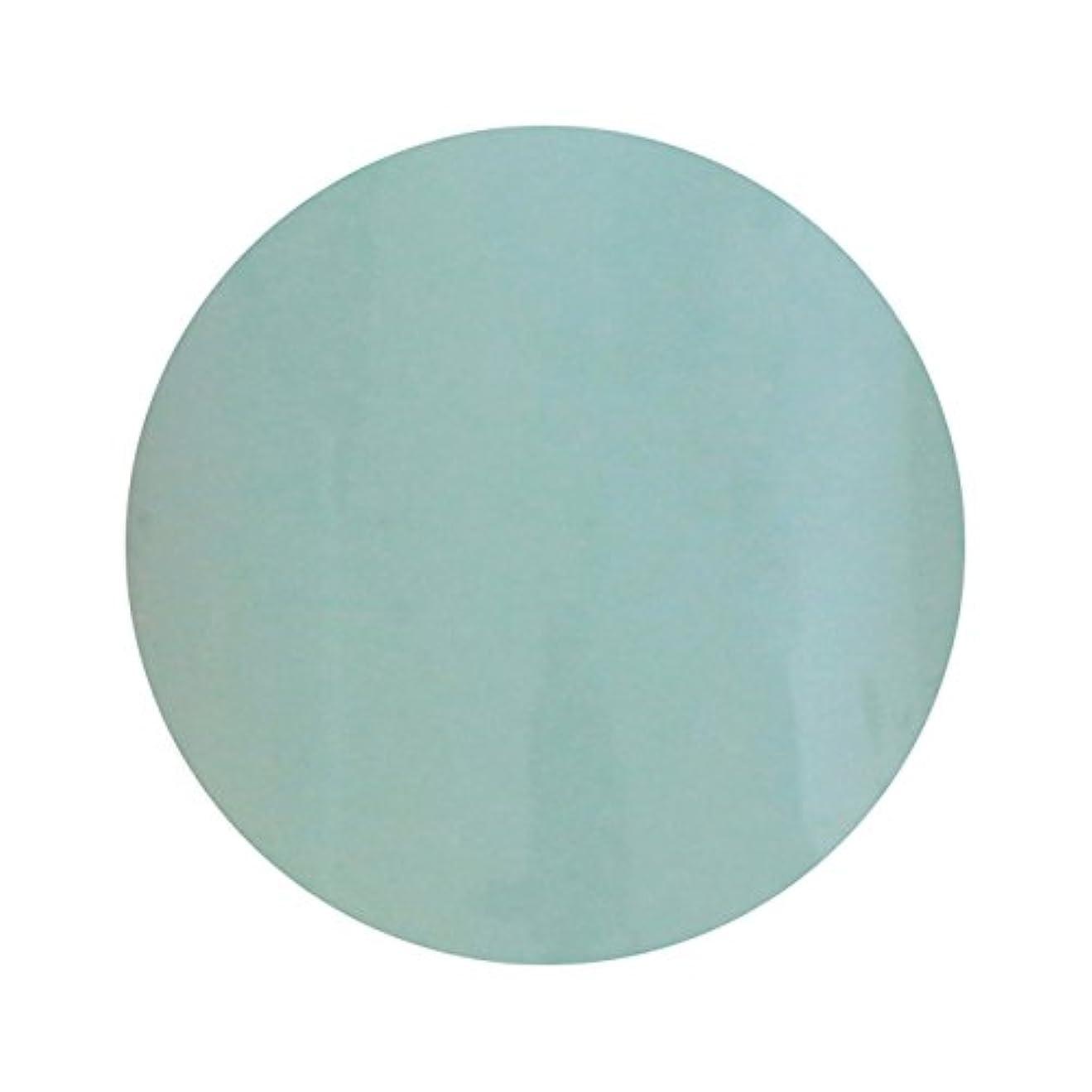 T-GEL COLLECTION ティージェル カラージェル D210 ペールブルー 4ml