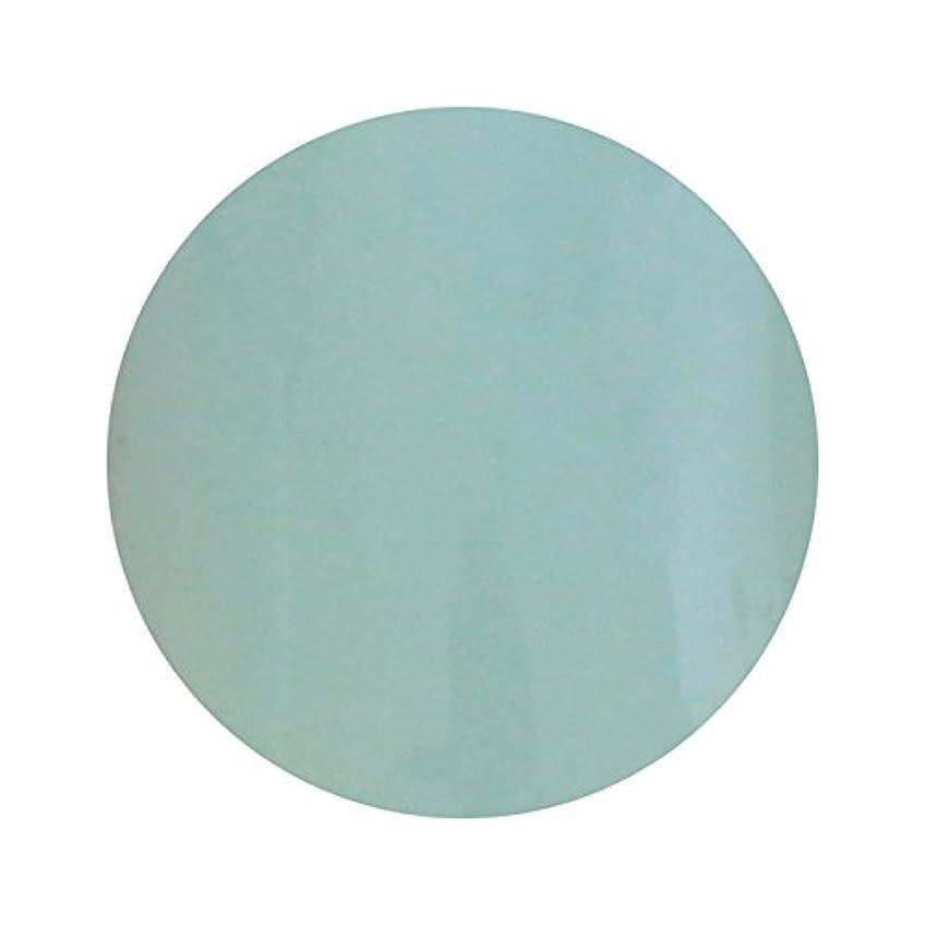 シンプルさガード何T-GEL COLLECTION ティージェル カラージェル D210 ペールブルー 4ml
