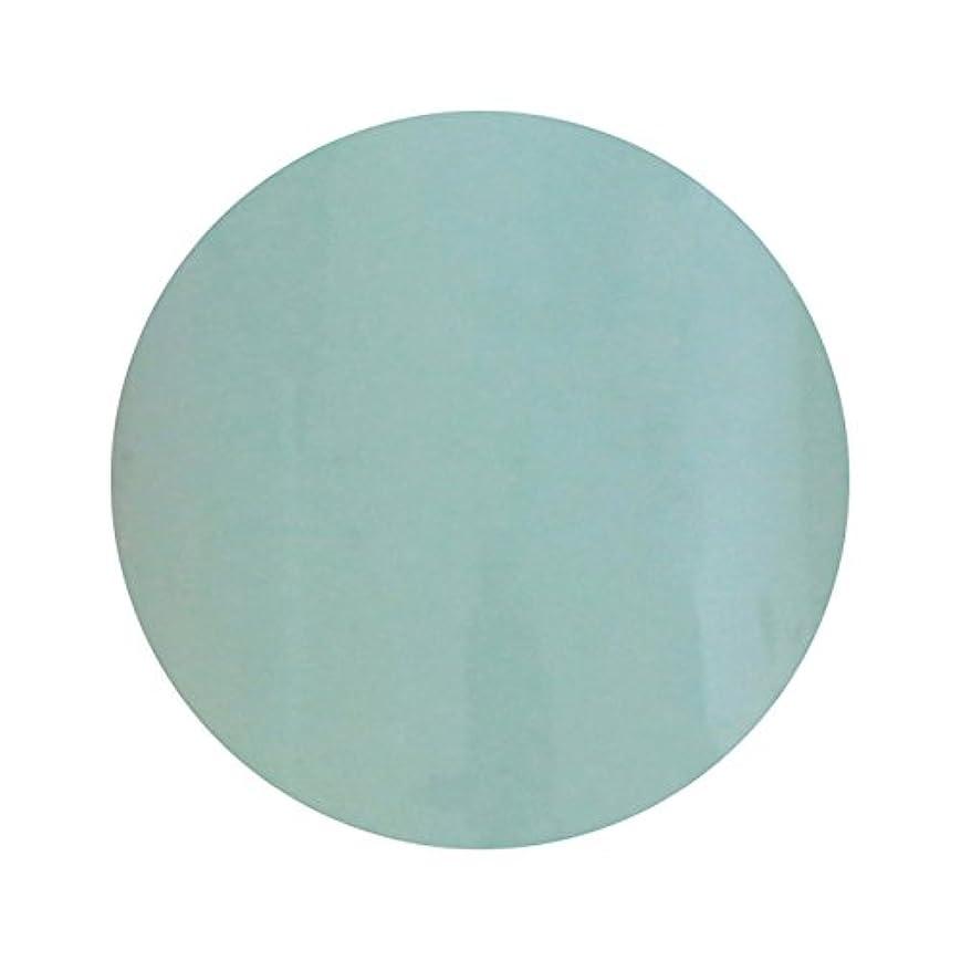 通知アンタゴニスト傾いたT-GEL COLLECTION ティージェル カラージェル D210 ペールブルー 4ml