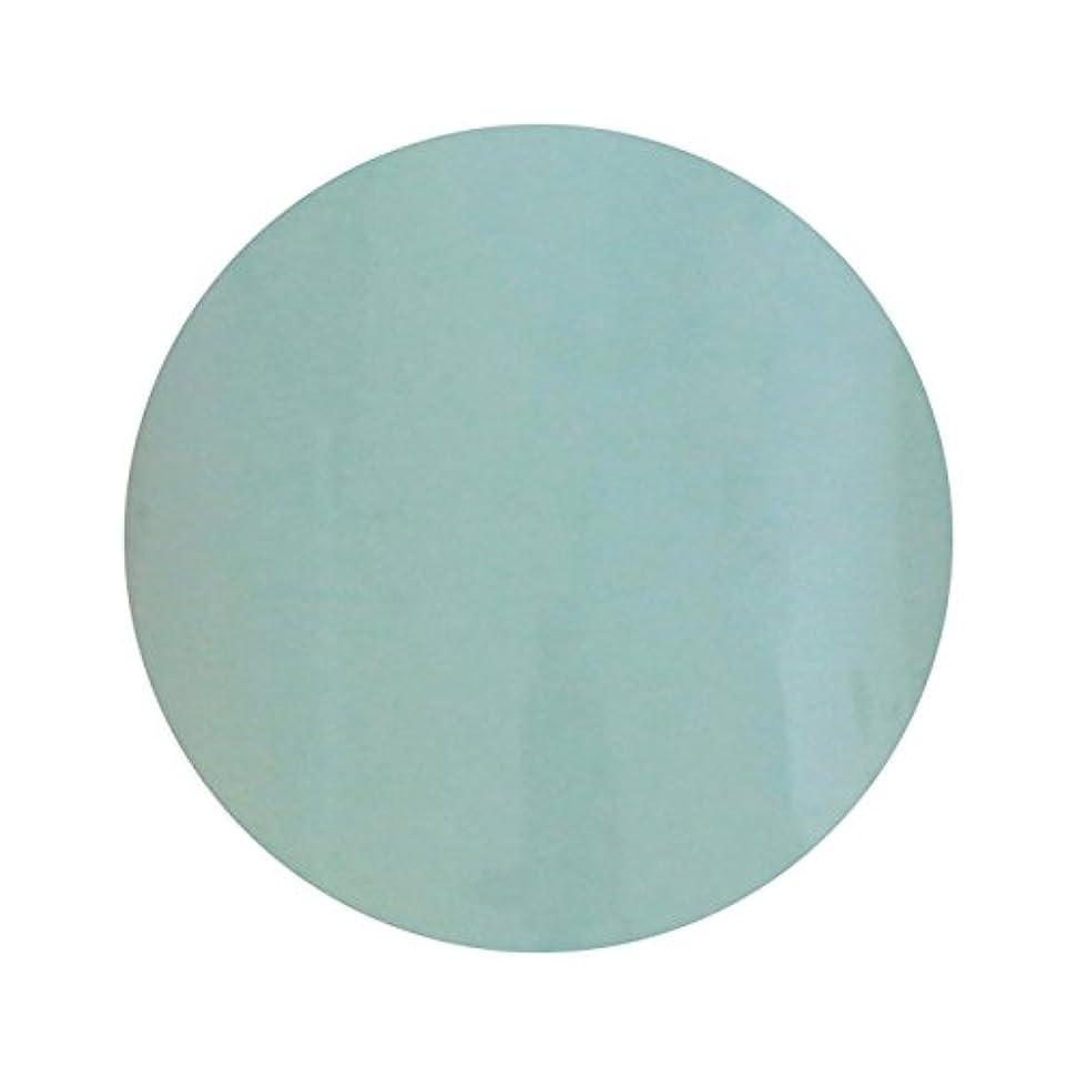 環境火山認可T-GEL COLLECTION ティージェル カラージェル D210 ペールブルー 4ml