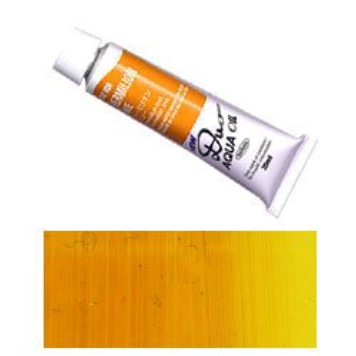 くびれた究極のどちらかDUO ホルベイン アクアオイルカラー デュオ 油絵の具 (水可溶性) 6号 (20ml) インデアンイエロー