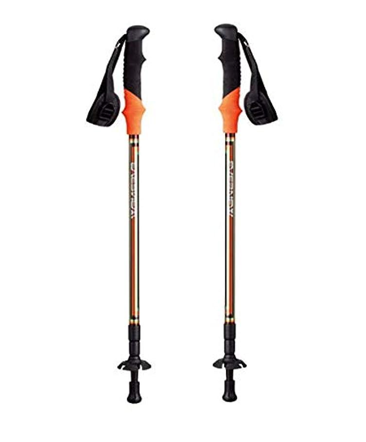 扱いやすい有名人ラグEVERNEW(エバニュー)I型ハイキングステッキ3(2本セット)トレッキングストック/EBH409 (オレンジ)