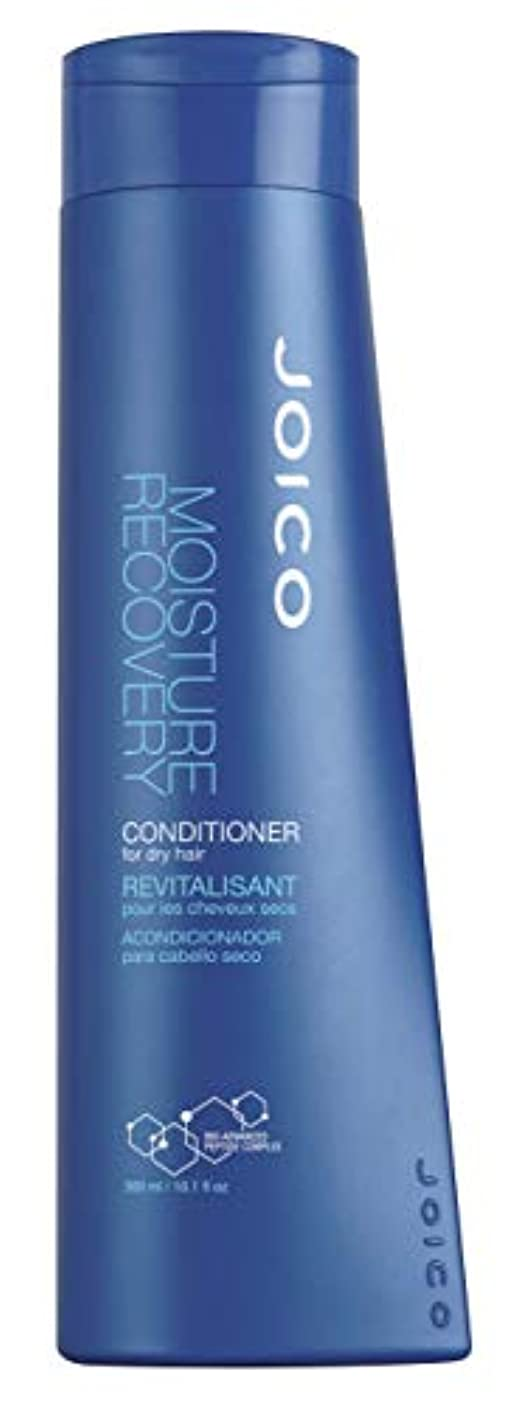 家庭揺れる士気Moisture Recovery by Joico Conditioner 300ml (並行輸入品)