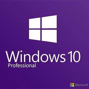 Windows10 Pro 64bit 日本語 DSP版 DVD LCP 【紙パッケージ版】