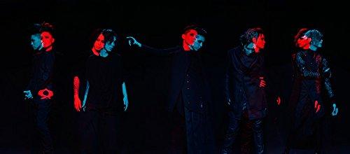 13th ANNIVERSARY –ⅩⅢ GALLOWS- [THE FIVE BLACKEST CROWS] 18.03.11 MAKUHARI MESSE [Blu-ray]
