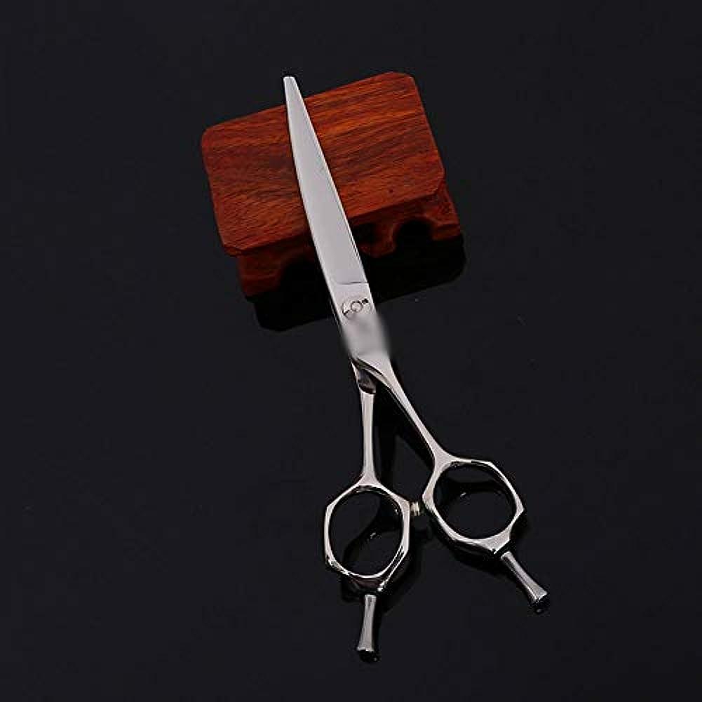 貫通する水族館突破口6インチ美容院プロの家族ハイエンド理髪プロのはさみ モデリングツール (色 : Silver)