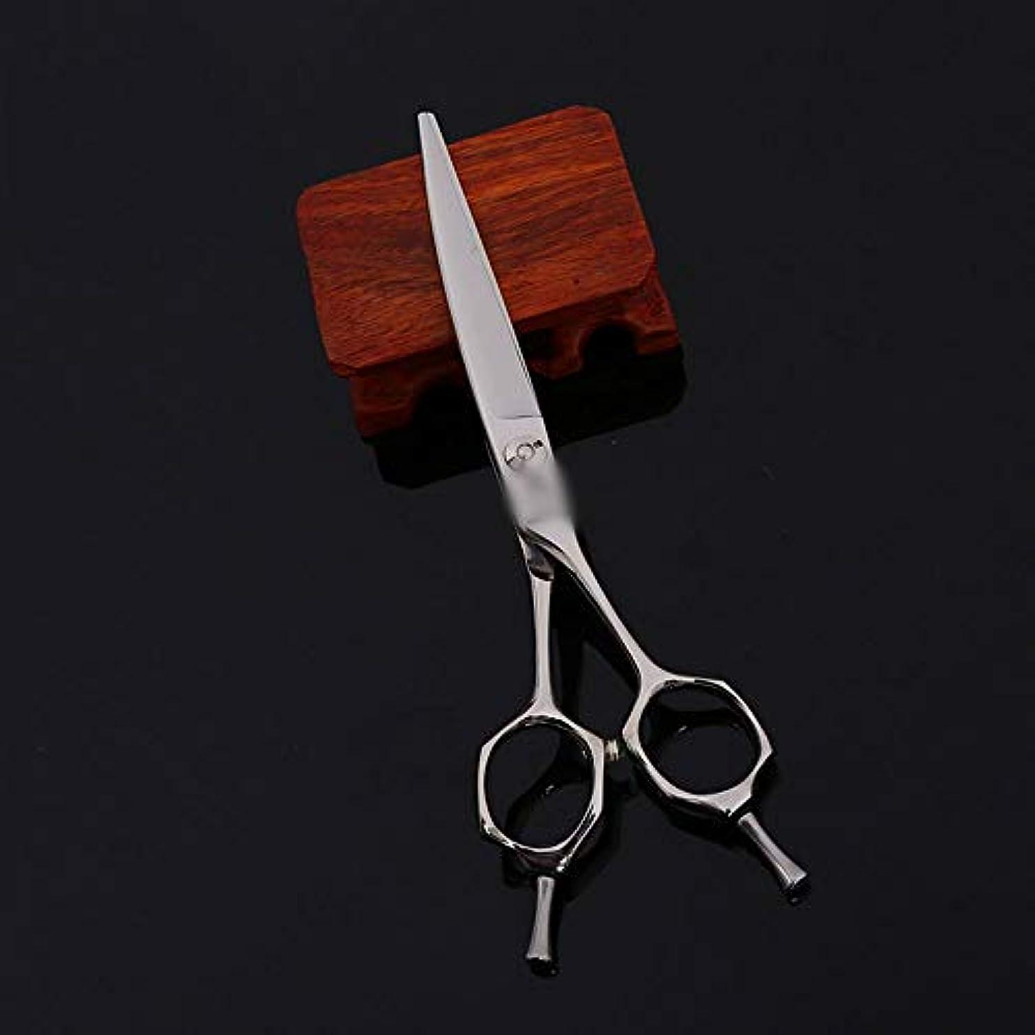 ボーダー知覚物理学者6インチ美容院プロの家族ハイエンド理髪プロのはさみ モデリングツール (色 : Silver)