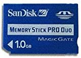 SanDisk Memory Stick PRO Duo 1GB SDMSPD-1024-J60