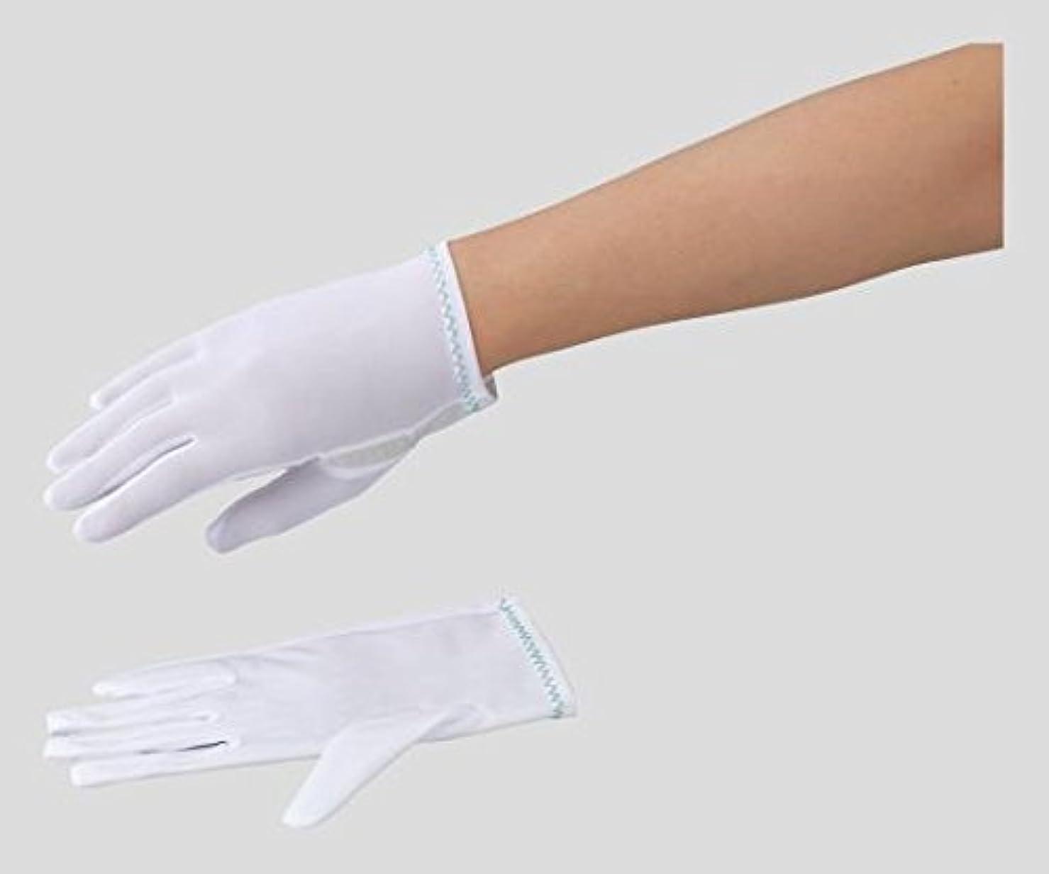 宣伝不要クリアアズピュア(アズワン)2-8594-01アズピュア防塵手袋ナイロンBNH-US