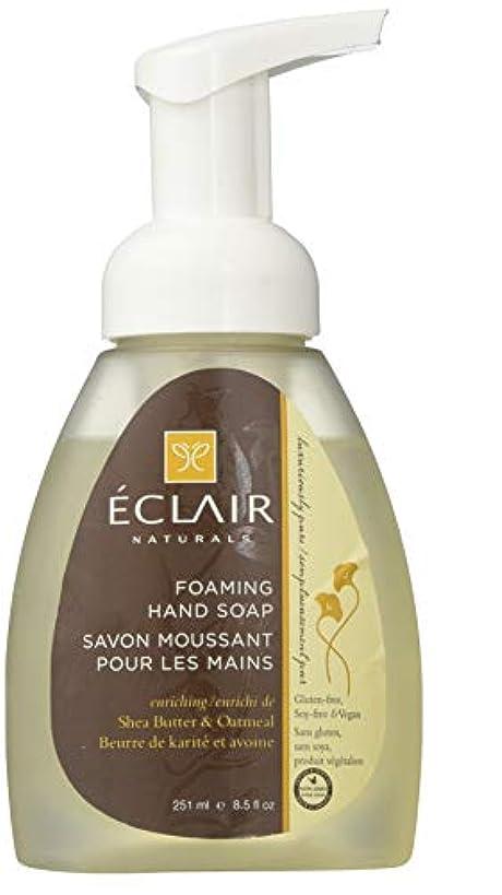 雷雨アイドル葉を拾うEclair Naturals Foaming Hand Soap - Shea Butter and Oatmeal - 12 Fl oz.