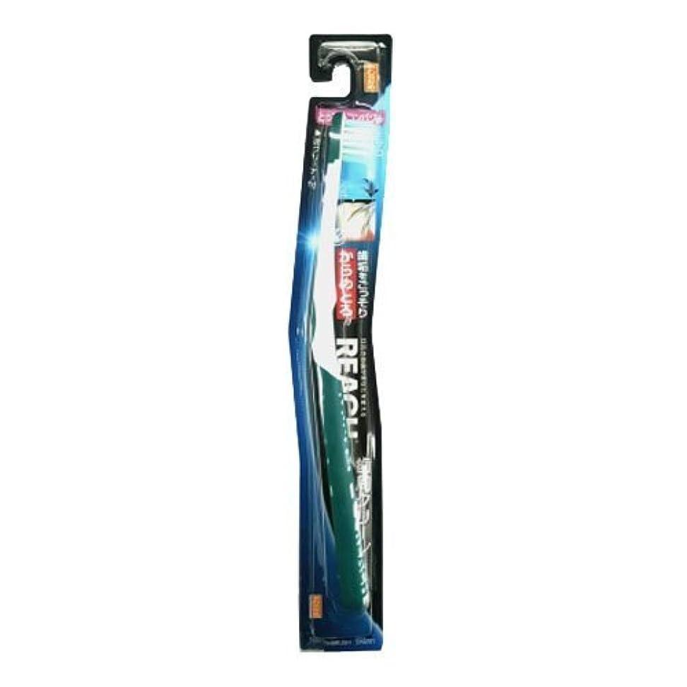 バッテリー抽出休憩【まとめ買い】リーチ歯周クリーンとってもコンパクトやわらかめ ×24個