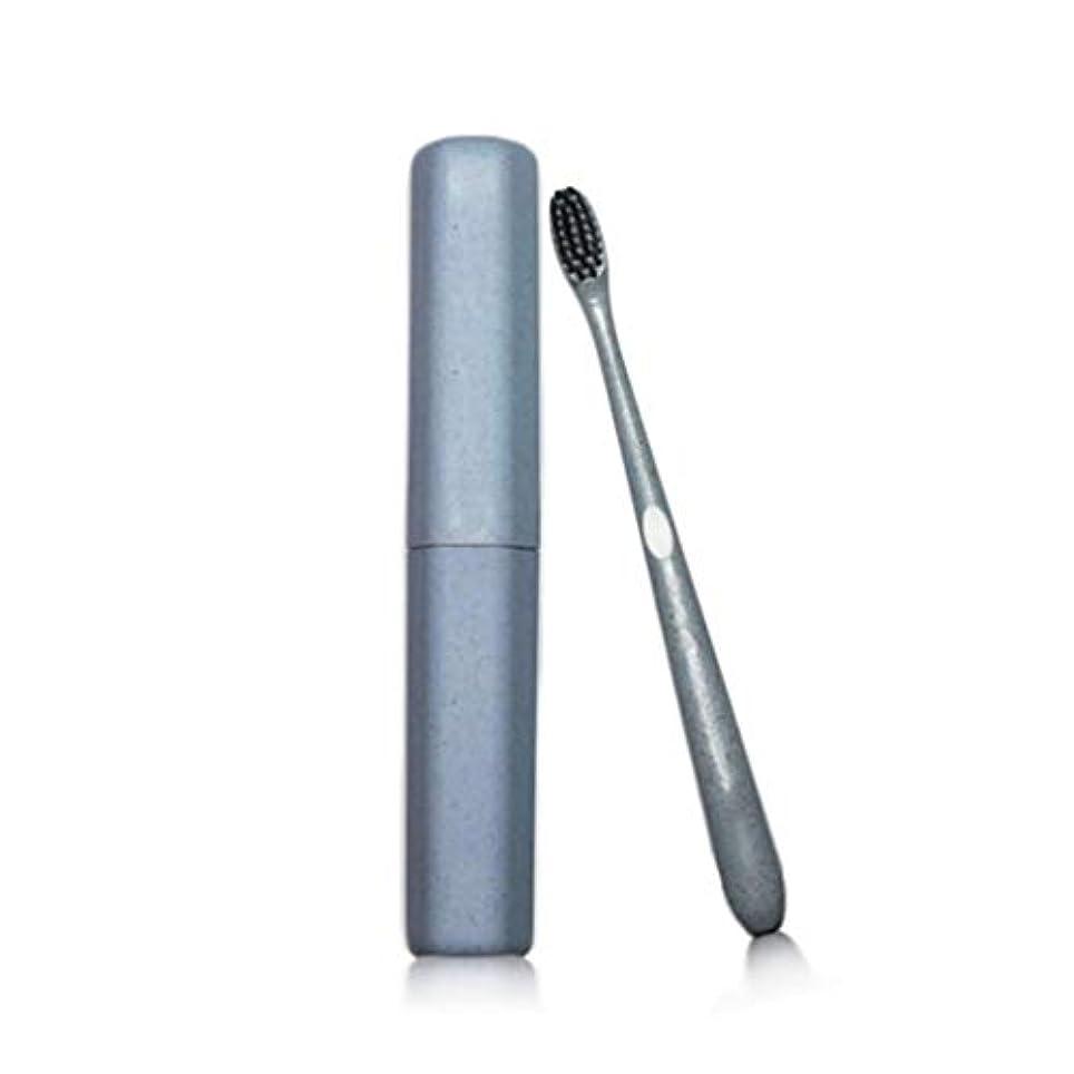 歯ブラシ大人のチューブ歯ブラシ特別なソフト竹炭ワイヤーカップル小さな頭の歯ブラシカスタムトラベル小麦麦わらの歯ブラシ (色 : 青, サイズ さいず : 20pcs)