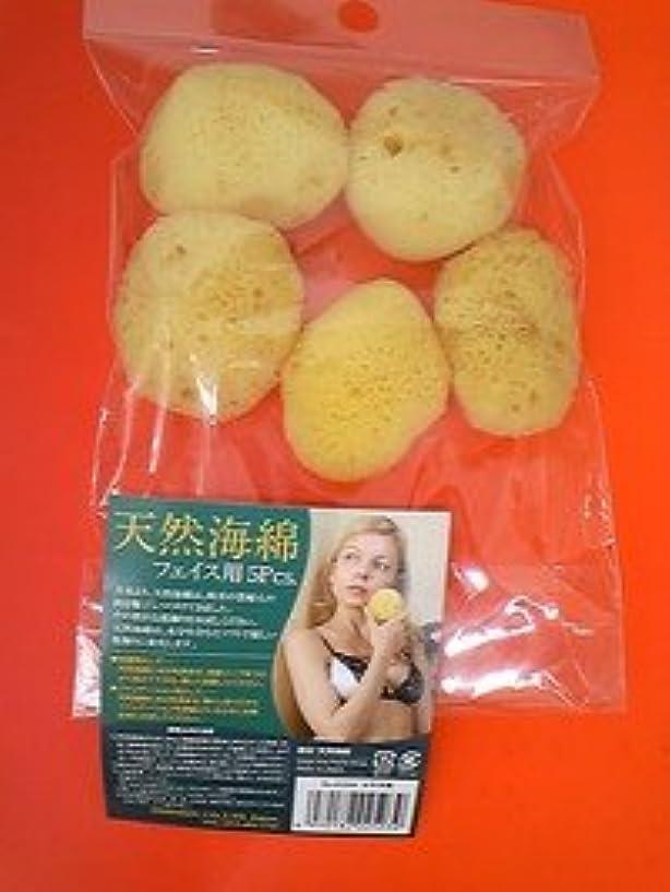 電球楽な市場天然海綿 フェイス用5P 太平洋産