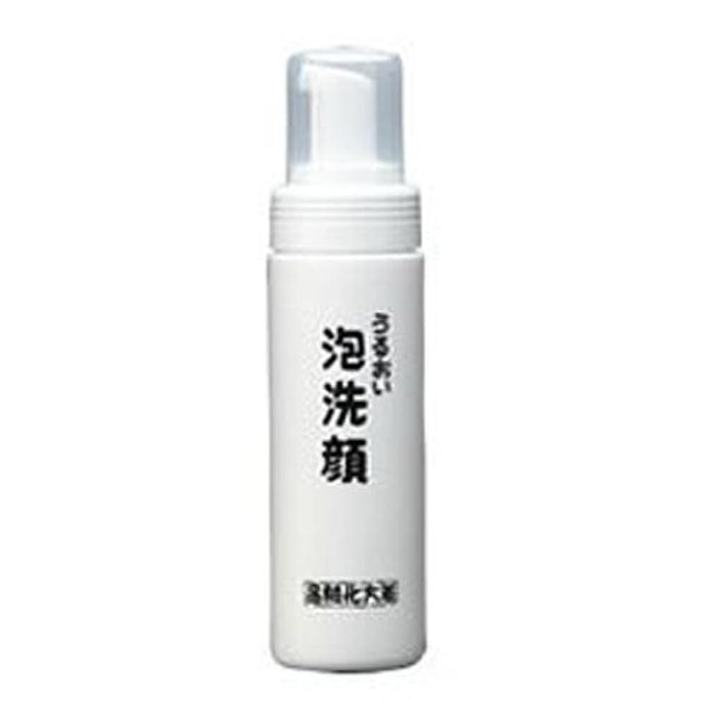 謎めいた窓を洗う不完全な箸方化粧品 うるおい泡洗顔 150ml はしかた化粧品