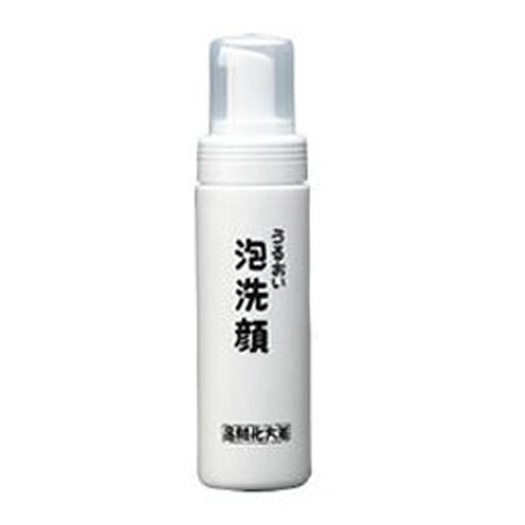 天の専門化する教義箸方化粧品 うるおい泡洗顔 150ml はしかた化粧品
