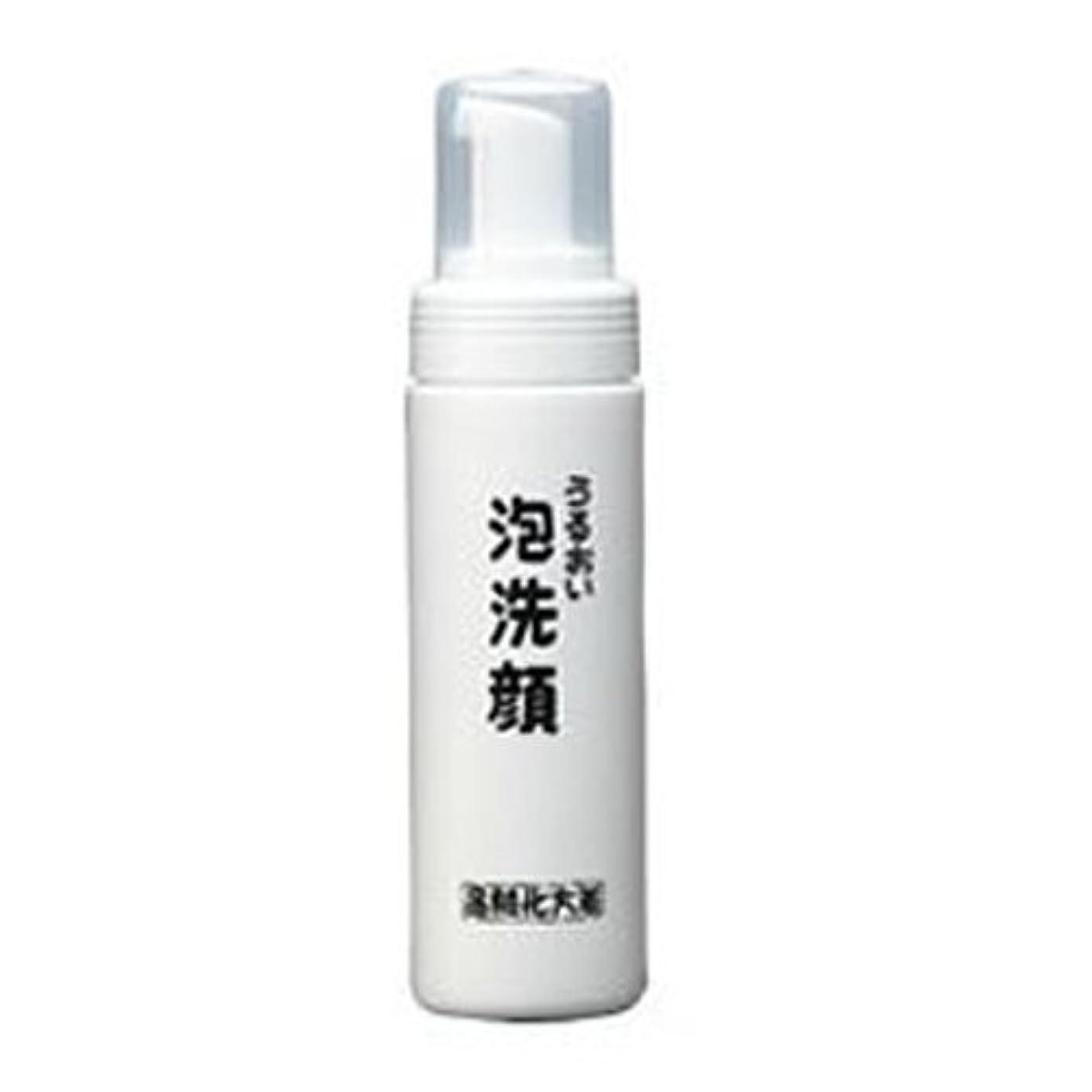 受信機ビタミンファシズム箸方化粧品 うるおい泡洗顔 150ml はしかた化粧品