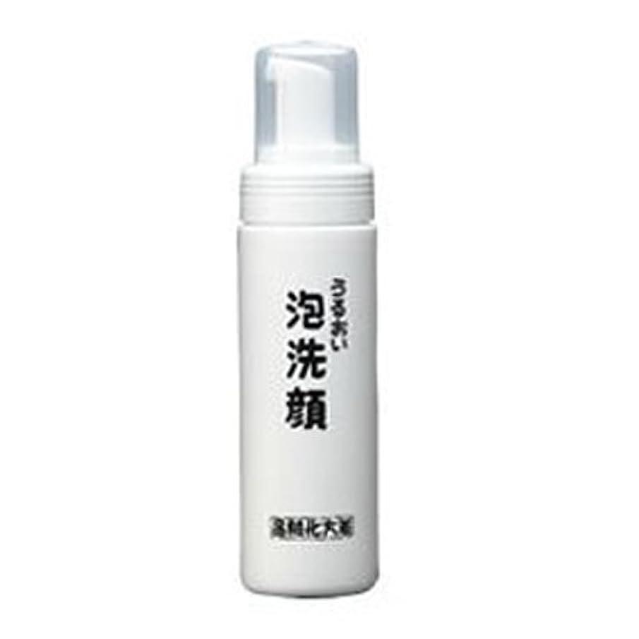 行方不明解決する仲介者箸方化粧品 うるおい泡洗顔 150ml はしかた化粧品