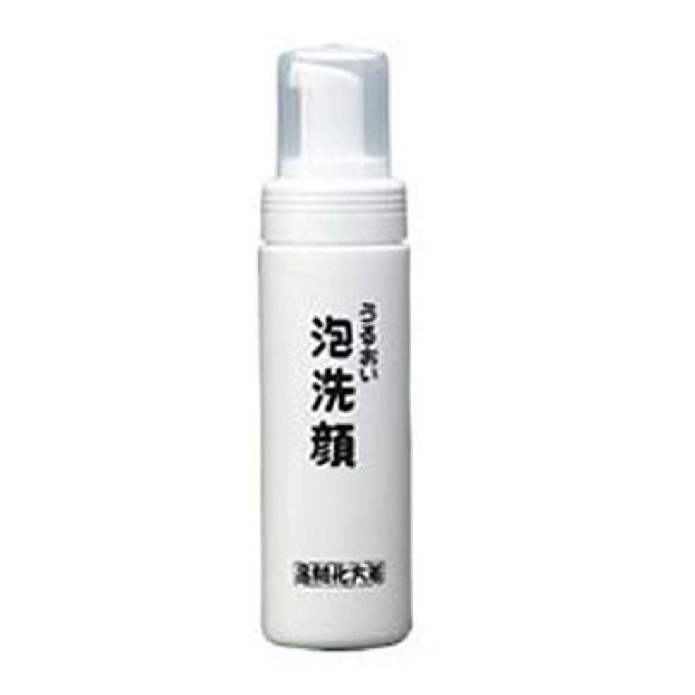 抑制メンター傾向があります箸方化粧品 うるおい泡洗顔 150ml はしかた化粧品