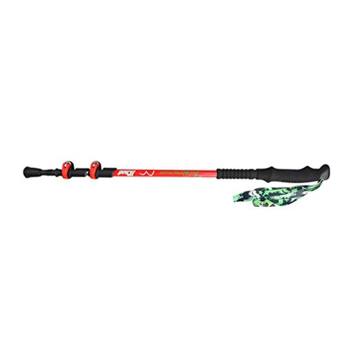 ボーナス不快な純度北欧ウォーキングポール、炭素繊維折りたたみ式伸縮アルミ合金杖、取り外し可能なスノートレイを装備、高齢者や若者に最適(男女兼用), Red