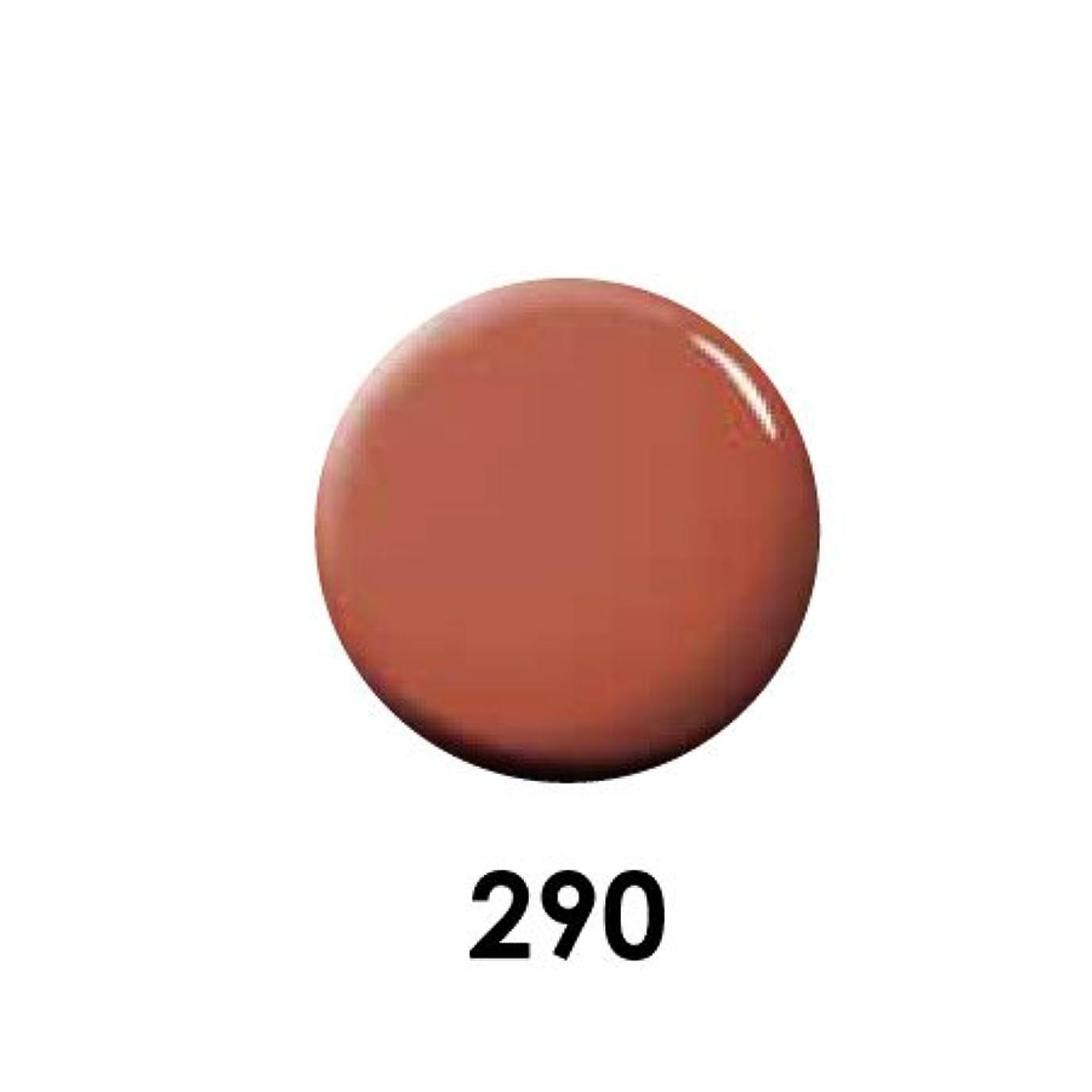 消毒剤南極はちみつPutiel プティール カラージェル 290 レッドソイル 4g (MARIEプロデュース)