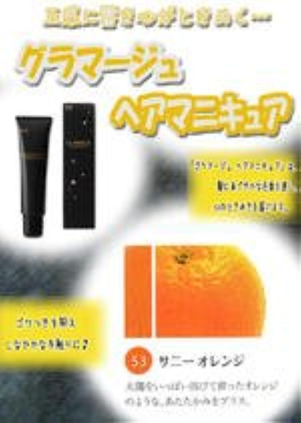 罪悪感汚れる主張するHOYU ホーユー グラマージュ ヘアマニキュア 53 サニーオレンジ 150g 【ビビッド系】