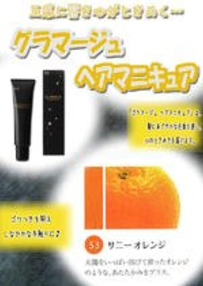 HOYU ホーユー グラマージュ ヘアマニキュア 53 サニーオレンジ 150g 【ビビッド系】