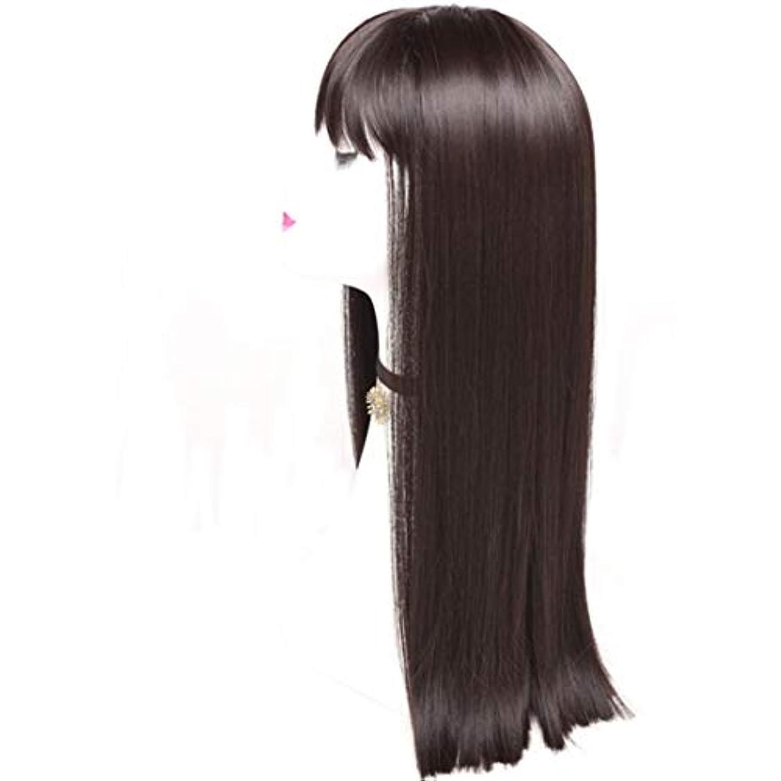オッズ不毛回転するSummerys レディースかつら魅力的な合成かつらで長いストレートの髪をかつら