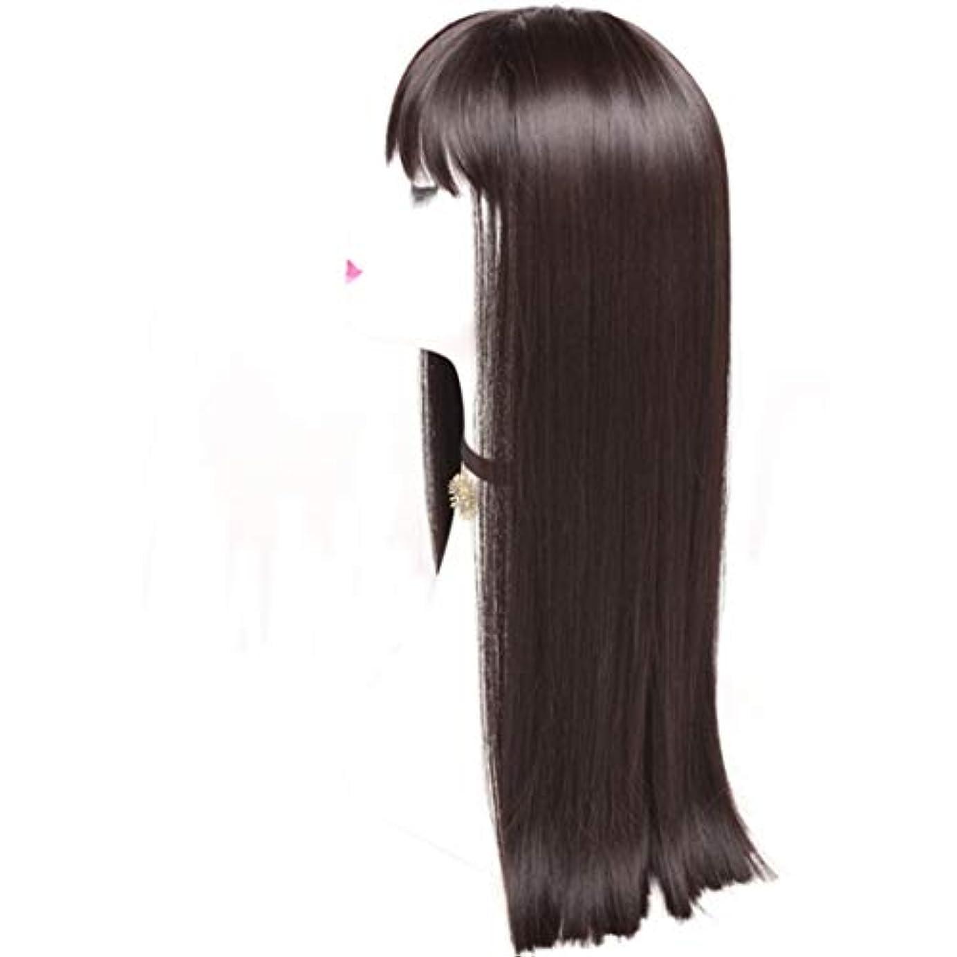 珍味ブラケット死すべきKerwinner レディースかつら魅力的な合成かつらで長いストレートの髪をかつら