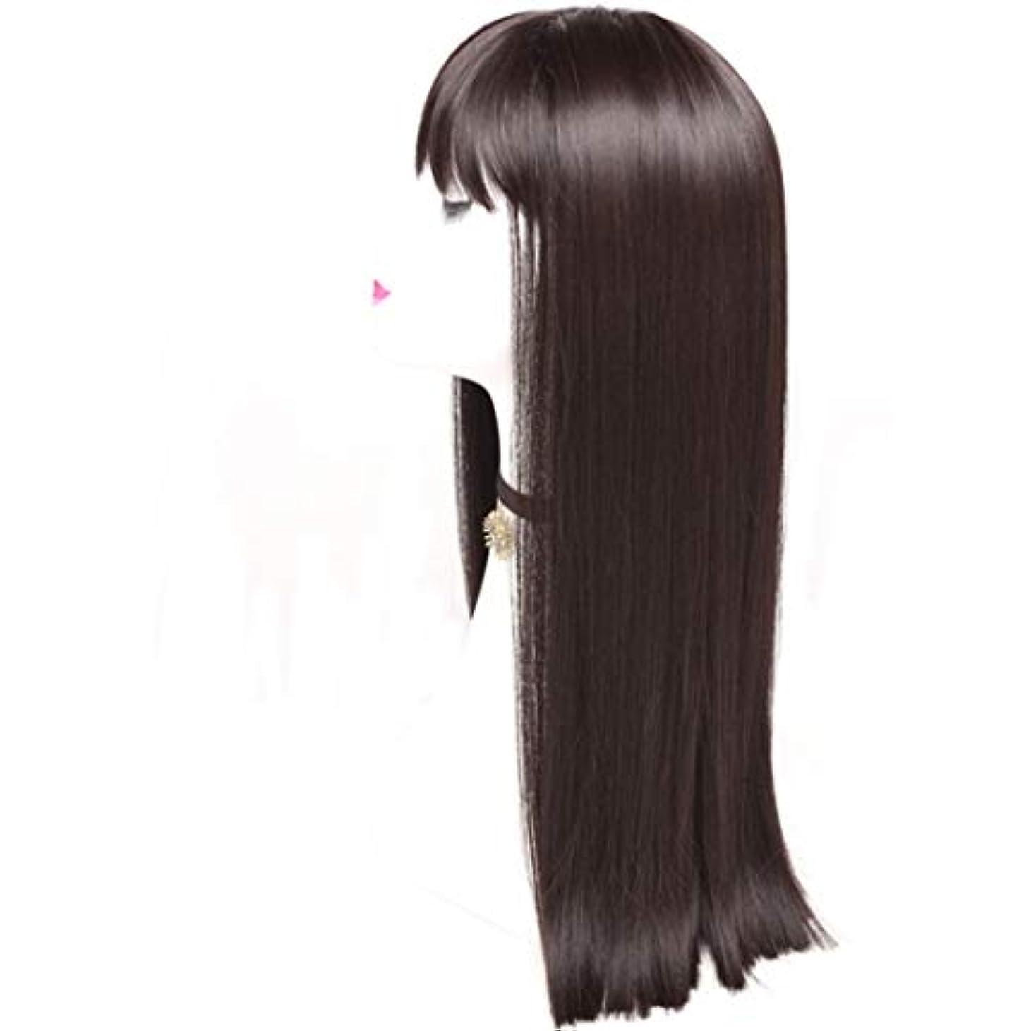 前臨検かごKerwinner レディースかつら魅力的な合成かつらで長いストレートの髪をかつら