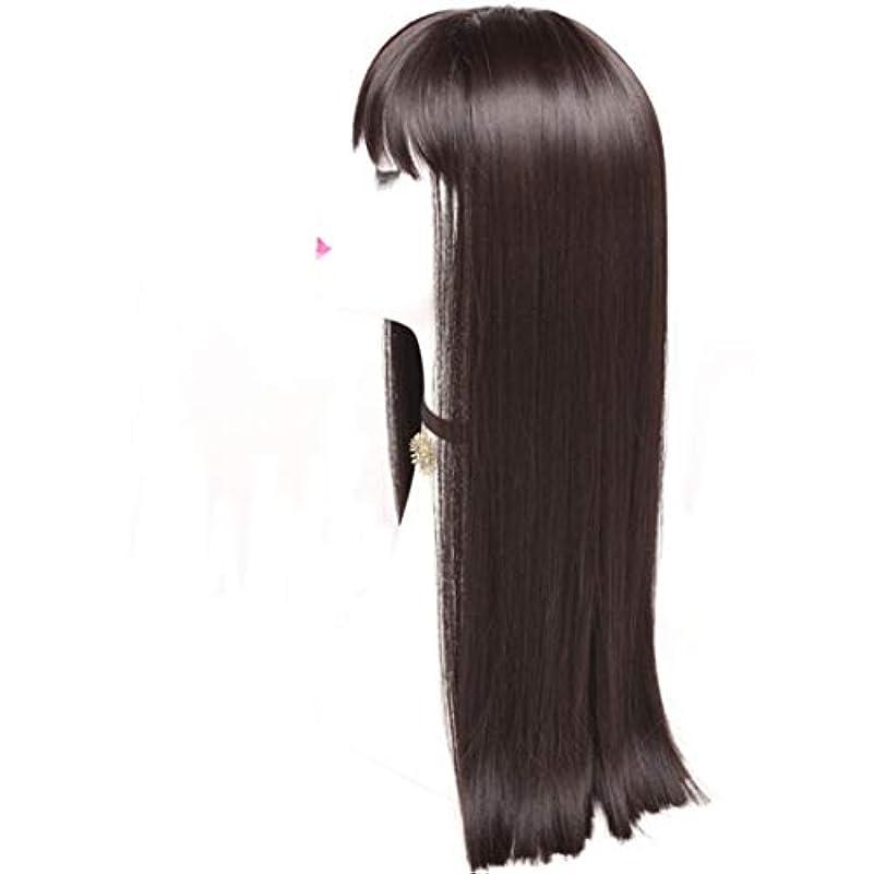 シャット日付慣性Kerwinner レディースかつら魅力的な合成かつらで長いストレートの髪をかつら