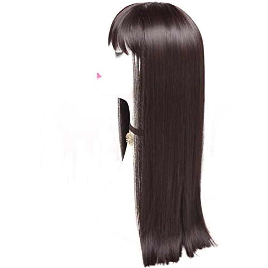 狼有罪しがみつくKerwinner レディースかつら魅力的な合成かつらで長いストレートの髪をかつら