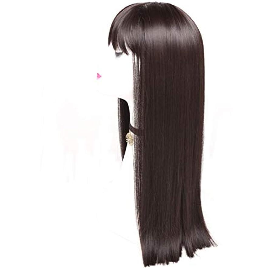 ラフ睡眠満足させる政治的Summerys レディースかつら魅力的な合成かつらで長いストレートの髪をかつら